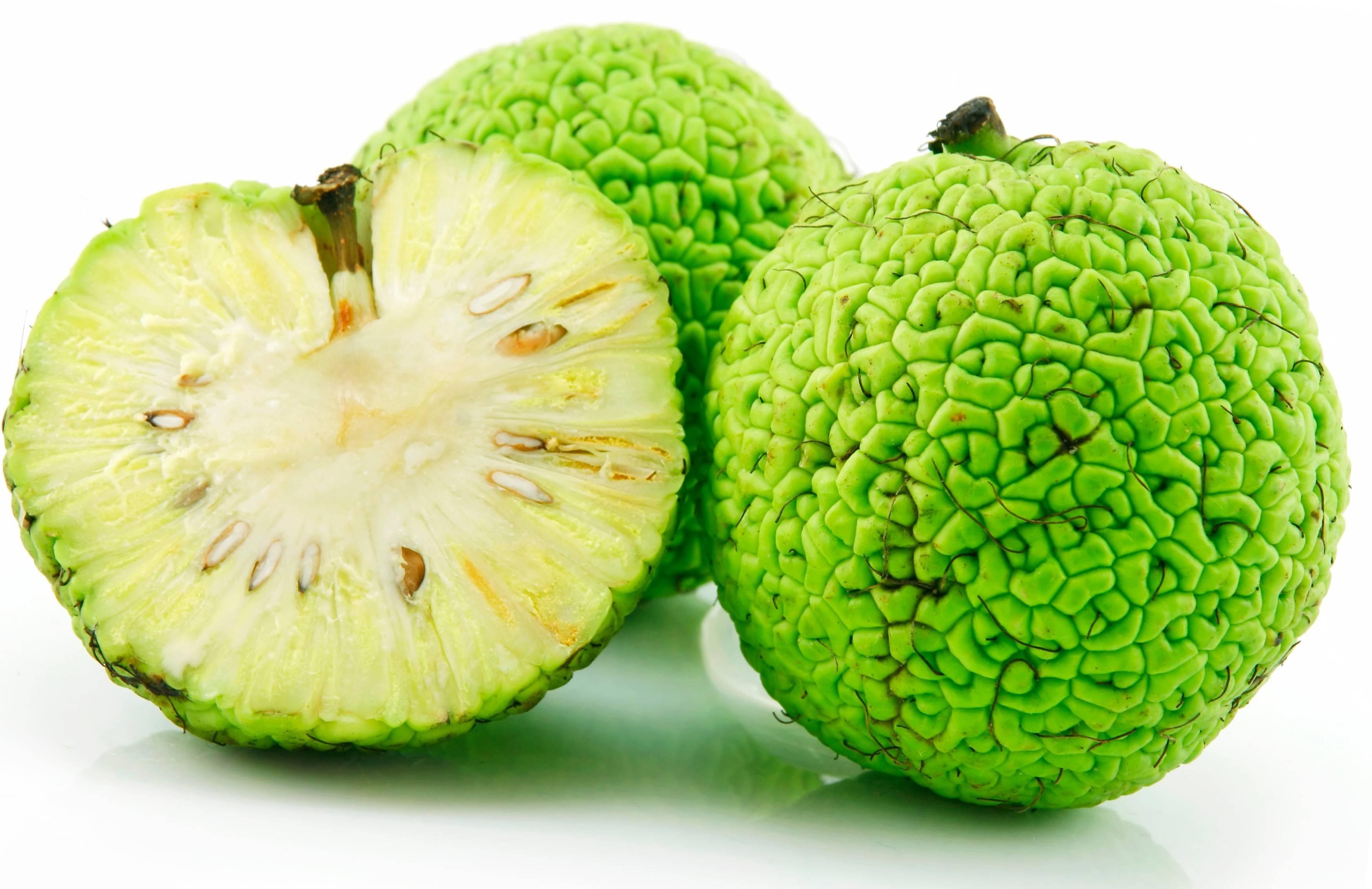Плод из крыма для суставов вывих плечевого сустава, симптомы, помощ